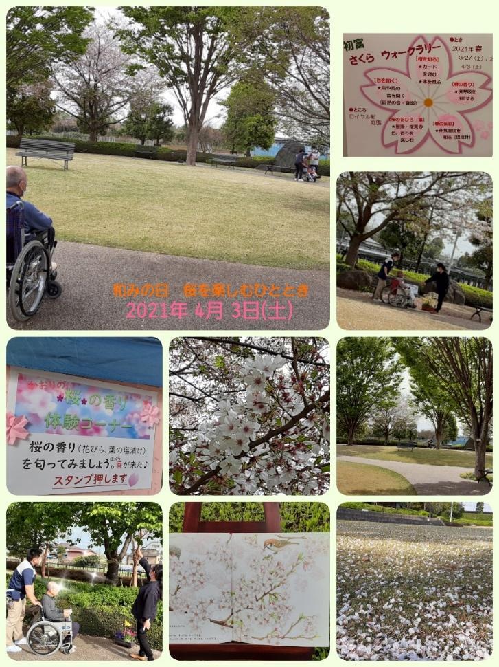 桜WR-4.jpg