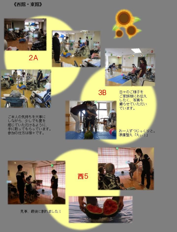 8月レク「スイカ割り」-4.png